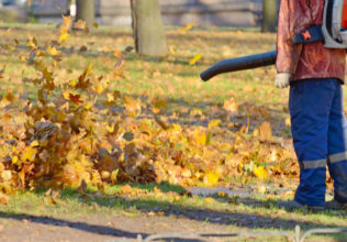 Guidelines To Select The Best Leaf Blower