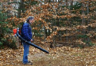 How to spot the best leaf blowers?
